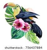 watercolor print of exotic bird ... | Shutterstock . vector #756437884