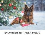 german shepherd dog with a gift ... | Shutterstock . vector #756459073