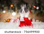 Stock photo animal rabbit bunny on christmas background 756499900