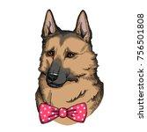 german shepherd with bow. hand... | Shutterstock .eps vector #756501808