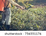 man spraying of pesticide on... | Shutterstock . vector #756551176