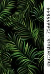 dark tropical background with... | Shutterstock .eps vector #756699844