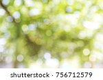 abstract natural green tree... | Shutterstock . vector #756712579