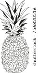 pineapple vector illustration | Shutterstock .eps vector #756820516