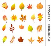 flat vector set of autumn... | Shutterstock .eps vector #756892228