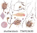 Watercolor set of vintage floral natural elements. Protea flowers, twigs and leaves. Botanical bright classic collection isolated on white background.