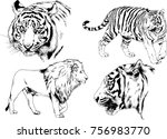 set of vector drawings on the... | Shutterstock .eps vector #756983770