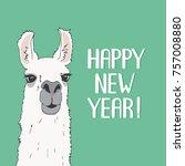 funny lama alpaca portrait with ... | Shutterstock .eps vector #757008880