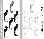 funny green bird quetzal set to ... | Shutterstock .eps vector #757074340