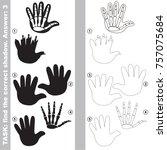 x ray skeleton hand   fingers... | Shutterstock .eps vector #757075684
