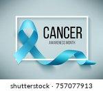 realistic blue ribbon  world... | Shutterstock . vector #757077913