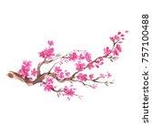 branch of cherry blossom  ... | Shutterstock . vector #757100488