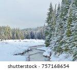 Gold Creek Meanders Through...
