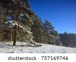 winter landscape with trees | Shutterstock . vector #757169746