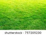 green grass background | Shutterstock . vector #757205230