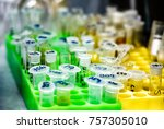 eppendorf tubes in stand filled ... | Shutterstock . vector #757305010
