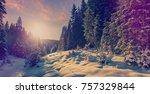 fantastic winter forest... | Shutterstock . vector #757329844