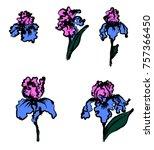 japanese iris flower set.hand...   Shutterstock .eps vector #757366450