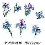 japanese iris flower set.hand...   Shutterstock .eps vector #757366480