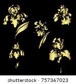 Japanese Iris Flower Set.hand...