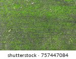 green moss background | Shutterstock . vector #757447084