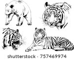 set of vector drawings on the... | Shutterstock .eps vector #757469974