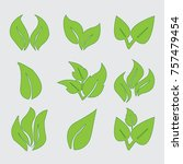 natural leaves   background ... | Shutterstock .eps vector #757479454