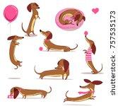 set with cute cartoon dachshund | Shutterstock .eps vector #757535173