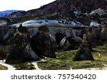 volcanic rocks   turkey | Shutterstock . vector #757540420