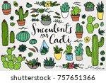 succulents   cacti   terrarium...   Shutterstock .eps vector #757651366