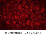 red rose background. | Shutterstock . vector #757671844