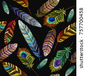 color feathers embroidery... | Shutterstock .eps vector #757700458