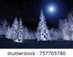 Moon Over Winter Forest. Winte...
