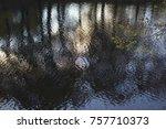 autumn pound reflection   Shutterstock . vector #757710373