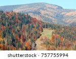 colorful forest on slope.... | Shutterstock . vector #757755994
