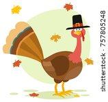 thanksgiving turkey bird with...   Shutterstock . vector #757805248