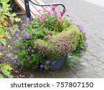travel to iceland   flowerbed... | Shutterstock . vector #757807150