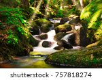 stream through forest ... | Shutterstock . vector #757818274
