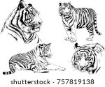 set of vector drawings on the... | Shutterstock .eps vector #757819138
