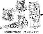set of vector drawings on the... | Shutterstock .eps vector #757819144