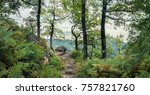 autumn forest in the mountains... | Shutterstock . vector #757821760