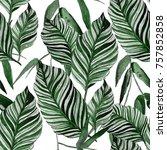 watercolor seamless pattern...   Shutterstock . vector #757852858