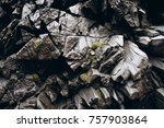 surface of the stone for... | Shutterstock . vector #757903864