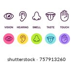 Icon Set Of Five Human Senses ...