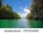river in  the tropical jungle ... | Shutterstock . vector #757923409