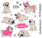 set with cute cartoon pug | Shutterstock .eps vector #757948360