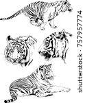 set of vector drawings on the... | Shutterstock .eps vector #757957774
