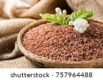 jasmine brown rice beery  in... | Shutterstock . vector #757964488