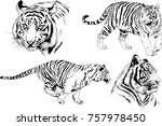 set of vector drawings on the... | Shutterstock .eps vector #757978450