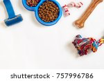 dog care items  isolated on... | Shutterstock . vector #757996786